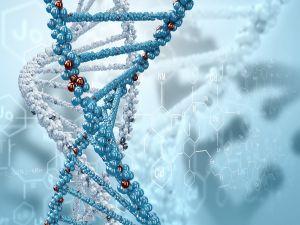 DNA 3D formula