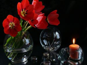 Glass vase with tulips and a candle