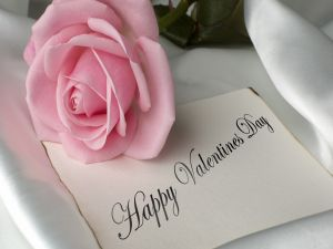 A pink rose and a message