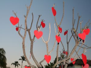 Hearts on the tree