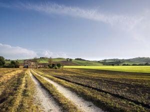Path towards a farmhouse