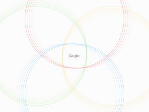 Google Plus and its circles