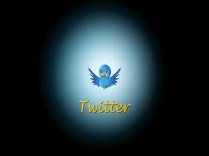 Twitter's bird winking