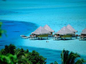 A swim in Bora Bora