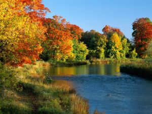 River with beautiful autumnal trees