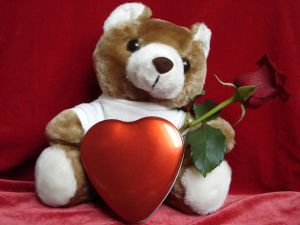Teddy bear with red rose for day of the lovers