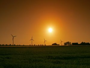 Sunset at wind farm