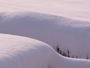 Thick snow