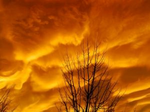 Clouds in an orange sky
