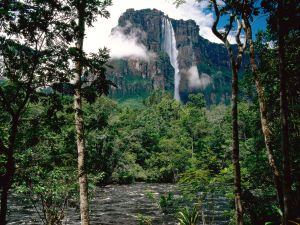 View of Angel Falls, Venezuela
