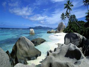 Beach with black rocks