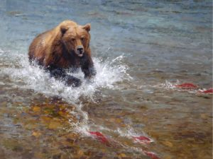 Bear in river