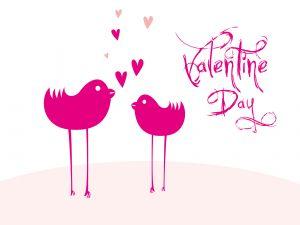 Birds on Valentine's
