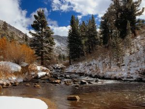 Snow on the banks of the river