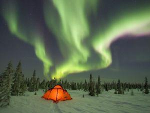 Aurora Borealis in a snowy place