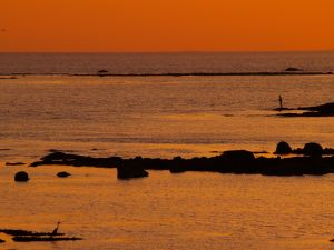 Sea fishing at sunset