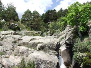 Near the source of the Manzanares river (La Pedriza, Madrid)