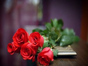 Red roses over the table